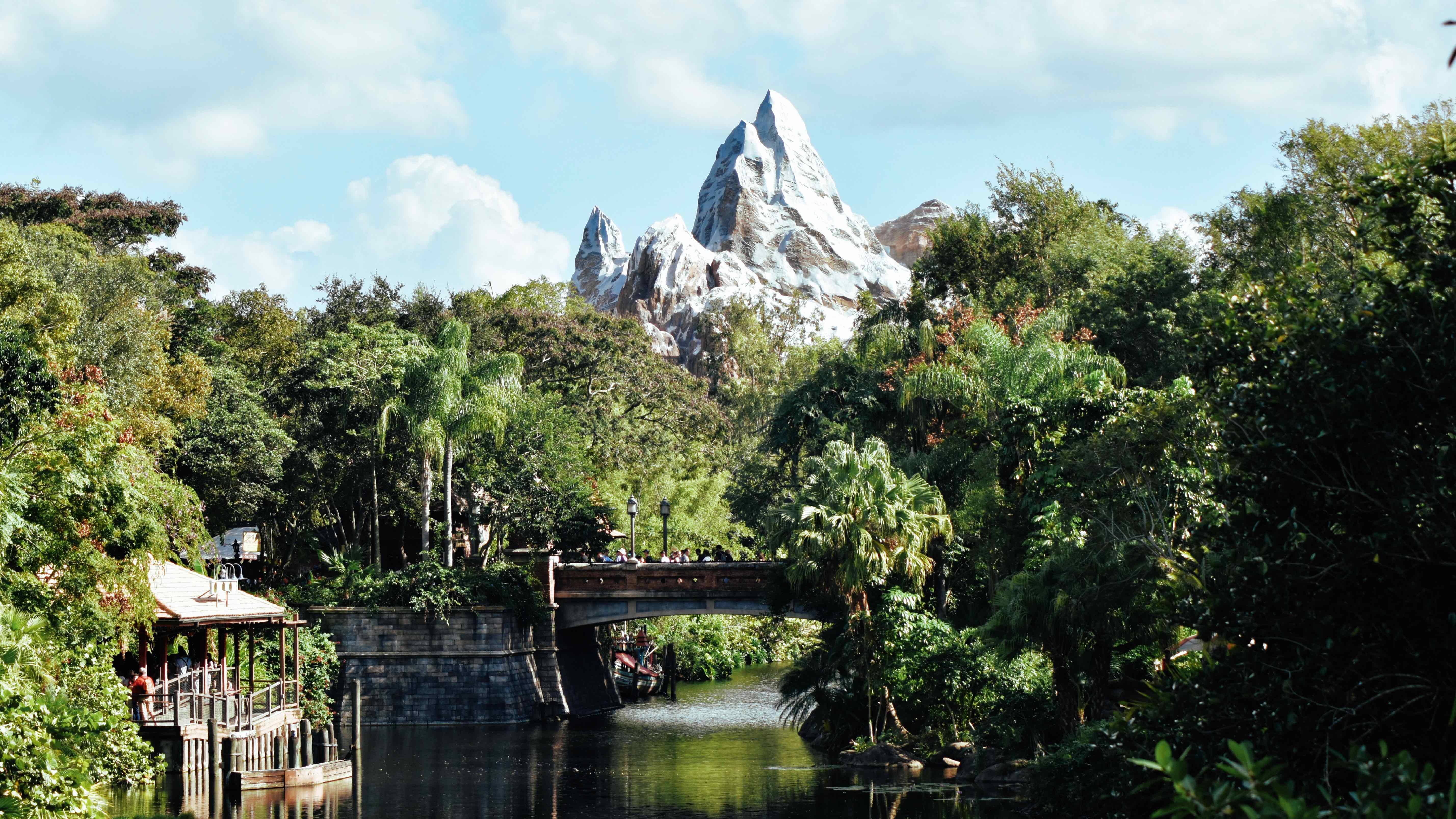 Disney World Animal Kingdom